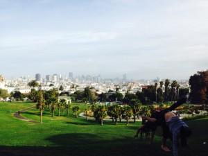 San Francisco Parkland
