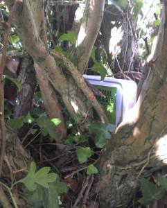 Crouching lunchbox, hidden loom band