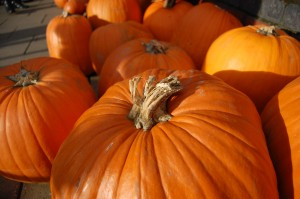 frui_course_01_pumpkins